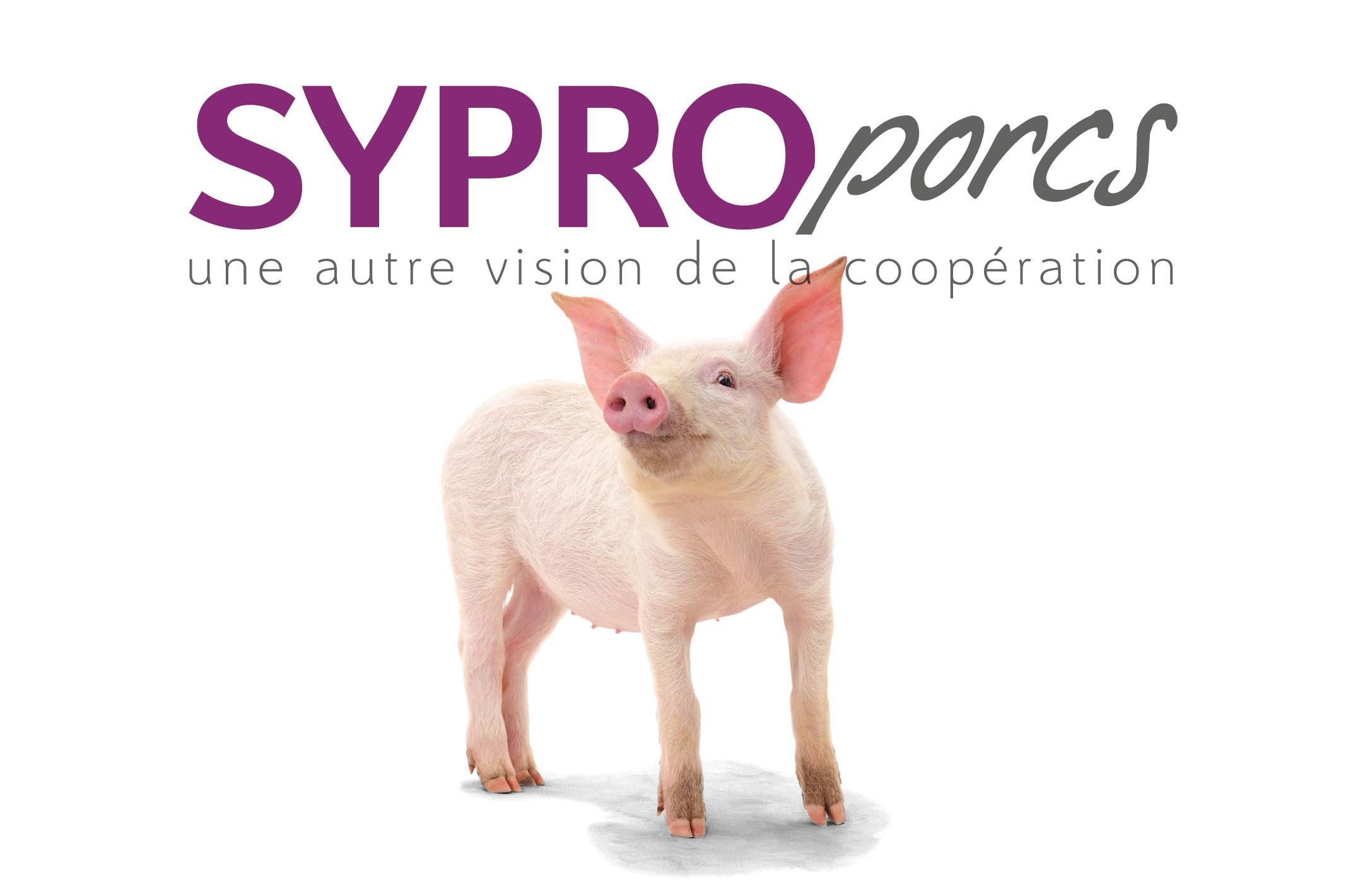 SYPROPORCS une autre vision de la coopération